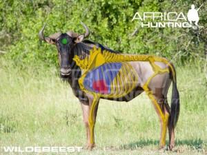wildebeest2